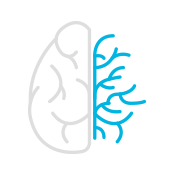 product-product-categories-magnetic-resonance-imaging-signa premier-Visualization Icon.png