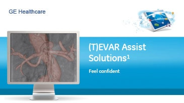 on-product-spec-sheets-tevar-assist-solutions-gehc-datasheet_aw-tevar-assist-solutions_pdf